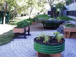 collection of raised garden beds