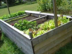 Difficult wheelchair access - raised garden bed