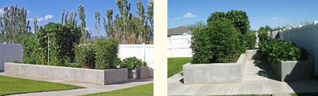 large raised beds using concrete walls
