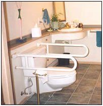 fold down grab bars around a toilet