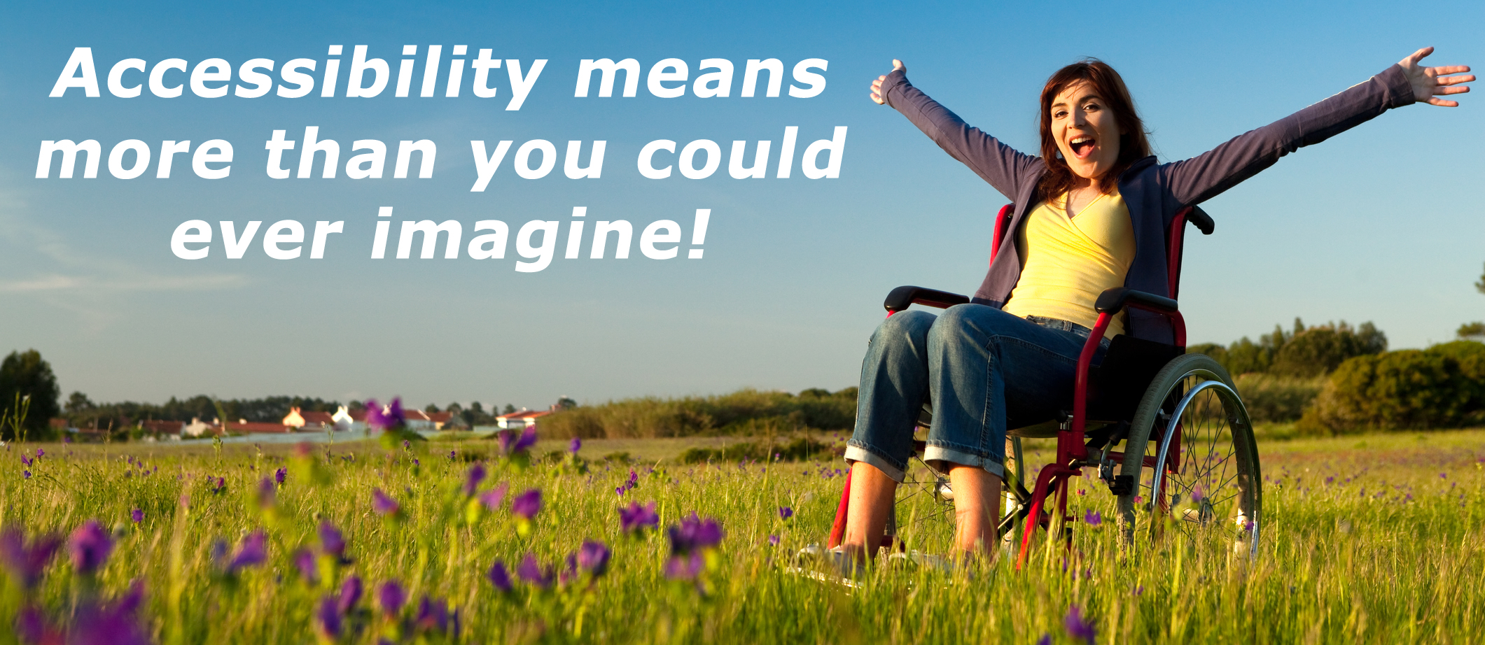 DIY Accessibility banner shows girl in wheelchair in field of flowers.